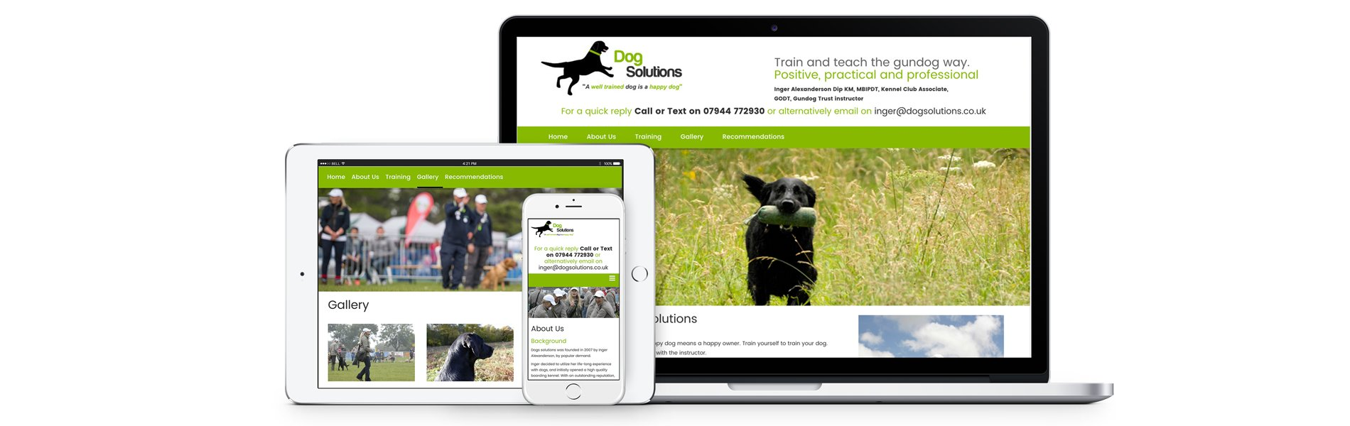 Dog Solutions website